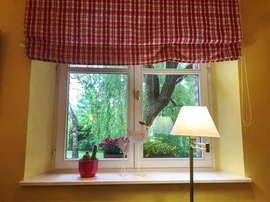 Fenster mit Gardine und Blick in die Natur